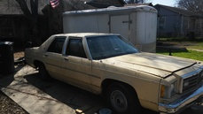 1979 Ford Ltd Base